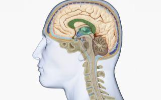 Менингит: симптомы, причины и лечение