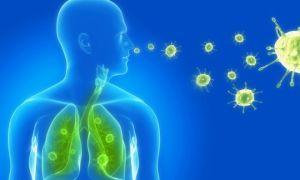 Как заражаются менингитом