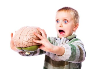 мозг и ребенок