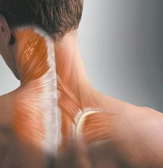 перенапряжение мышц шеи